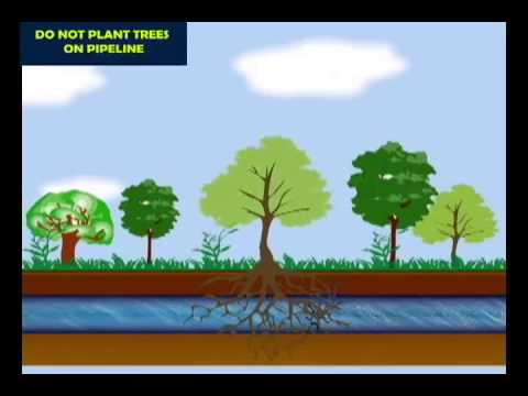 BPCL - Pipeline Safety_Youtube_thumb_7